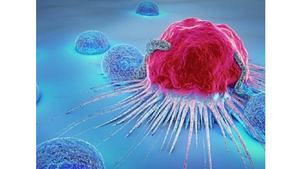 فرق تومور با سرطان چیست؟