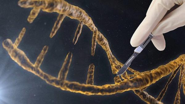 هر آنچه باید در مورد سرطانهای ژنتیکی بدانید