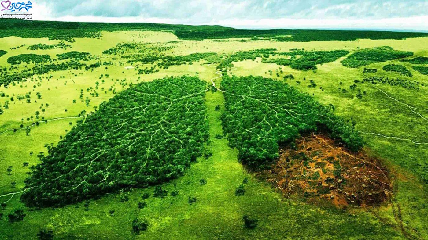 تاثیر آلودگی محیط زیست بر ابتلا به سرطان|انواع آلاینده های محیطی که می توانند خطر ابتلا به سرطان را افزایش دهند|شدت ابتلا به سرطان در مقابل عوامل محیطی مختلف|نوع آلاینده های زیست محیطی|مبتلا شدن به سرطان|